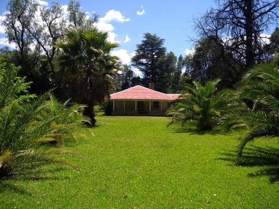 La Casona Del Bosque-habitaciones Para 4 Personas.