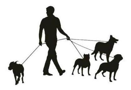Imagem 1 de 1 de Passeador De Cachorro