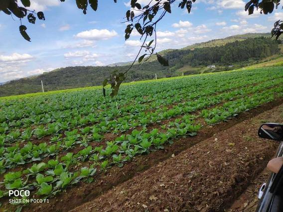 Lindo Cond. Rural De Chacara 600m2 Totalmente Plano Só 25mil