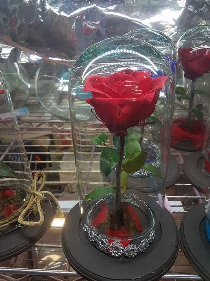 Rosas Eternas!!! Duran De 5 A 7 Años