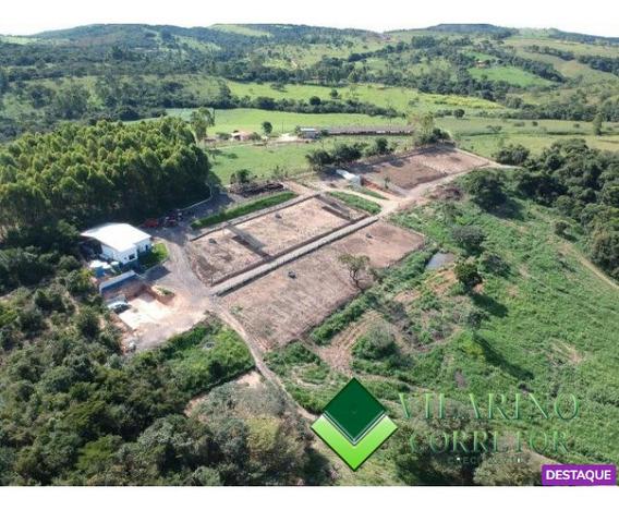 Fazenda Em Itauna - Mg - Para Gado Confinado Ou Leitero - 2431v