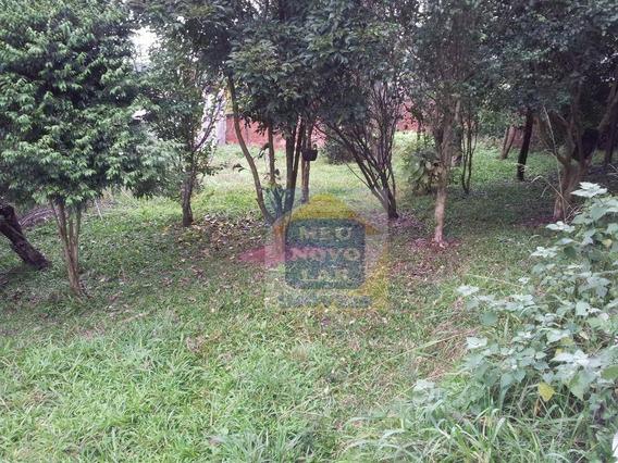 Terreno Residencial À Venda, Campina Da Barra, Araucária. - Te0011