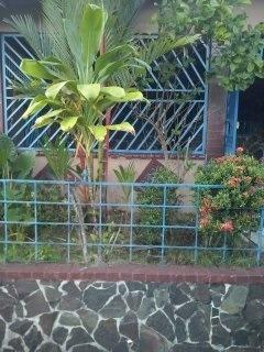 Alquiler Casa En Vista Alegre