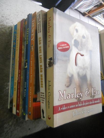 Livros Com Lindas Estórias De Animais De Estimação 10 Vols