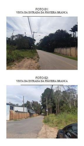 Imagem 1 de 1 de Campo Limpo Paulista - Chacaras Campo Limpo - 0000010007374