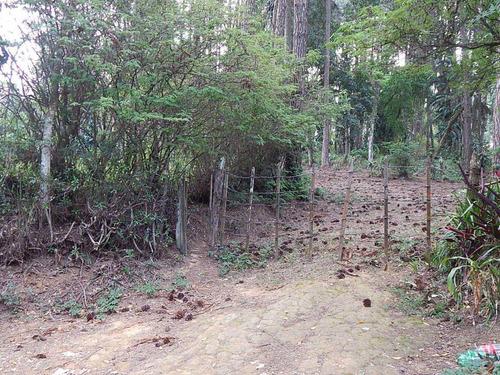 Imagem 1 de 5 de Terreno À Venda, 10500 M² Por R$ 3.000.000,00 - Jardim Colibri - Cotia/sp - Te4648
