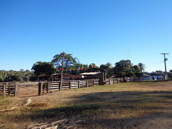 Fazenda A Venda No Bairro Centro Em Januária - Mg. - 1081-kz-1