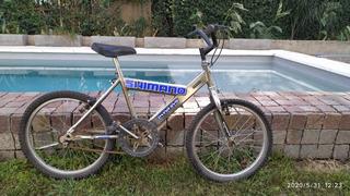 Bicicleta Niños Rodado 20 Bmx, Excelente Estado