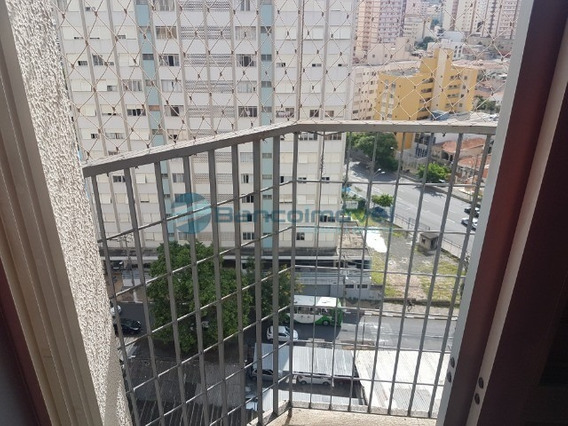 Apartamento Para Locação Em Campinas - Ap02511 - 34792359