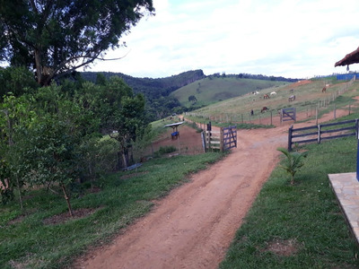 Fazenda Com 327 Ha No Sul De Minas , Cidade De Serranos - 4867