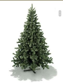 Arbol De Navidad Pino Arbolito Candiense
