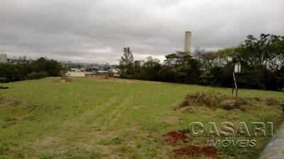 Terreno Industrial Para Locação, Paulicéia, São Bernardo Do Campo - Te3758. - Te3758