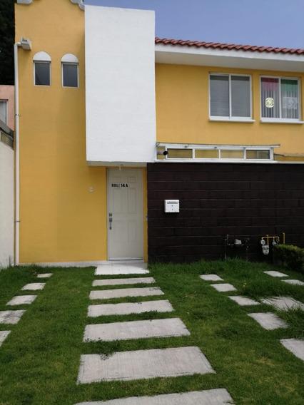 Casa En Renta En Toluca Fraccionamiento Ahuehuetes