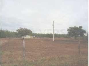 Fazenda Com 650 Hectares Em João Pinheiro/mg - 1080