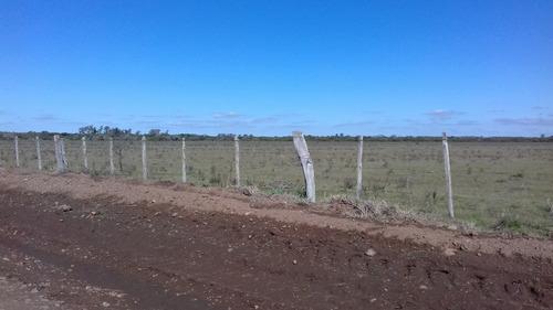 90 Ha 37 Km Al Norte De Ciudad Salto , Casco Coneat 145
