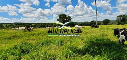 Imagem 1 de 15 de Fazenda Uberlândia Mg Para Pecuária Ou Soja, Milho 82,03 Hectares - 358