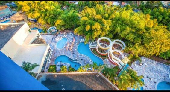 Golden Dolphin C/park Aquatico Entra Seg.sai Sex.valor Total