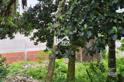 Terreno Para Construtor Na Cesp, Em Itanhaém - Ter073