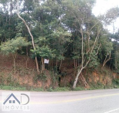 Terreno Para Venda Em Nova Friburgo, Campo Do Coelho - 138