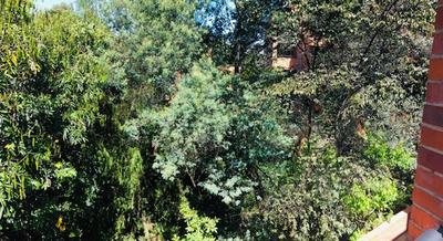 Casa En Venta-arriendo, Santa Barbara Alta Bogotá