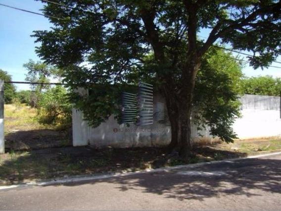 Terreno - Te00036 - 4380994