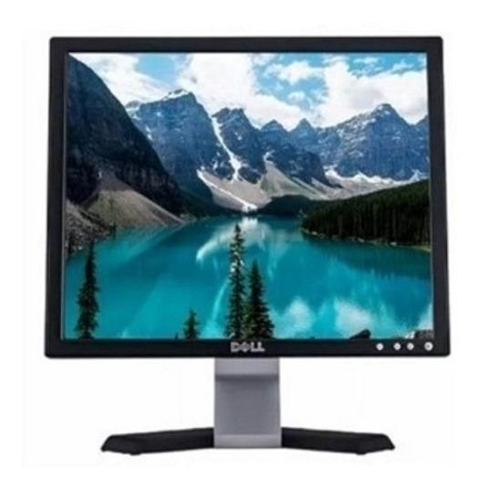 Monitor Dell 14 Polegadas