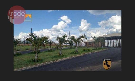 Terreno À Venda, 420 M² Por R$ 100.000 - Estância Cavalinno - Analândia/sp - Te1015