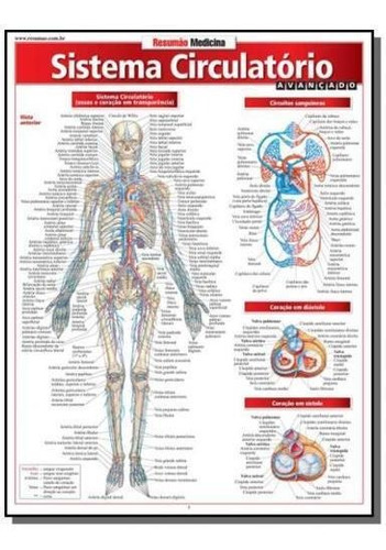 Resumao Medicina - Sistema Circulatorio Avancado