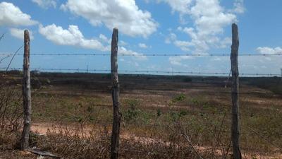 Fazenda À Venda, 700000 M² Por R$ 5.000.000 - Zona Rural - Itapipoca/ce - Fa0006