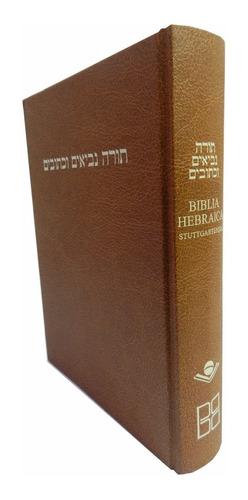 Biblia Hebraica Stuttgartensia  Hebreo Bíblico