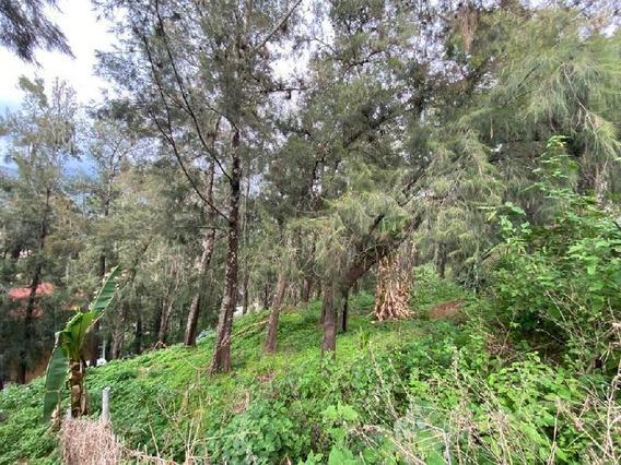 Terreno Habitacional En Venta En La Peña, Valle De Bravo, México