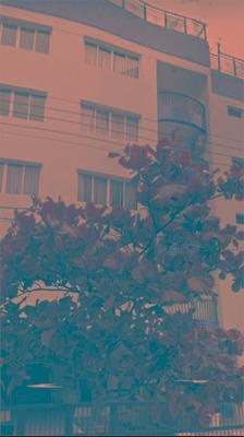Apartamento Pra Venda No Guarujá