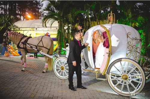 Carruagem  Carros Antigos Para Casamento Noivas  Debutantes