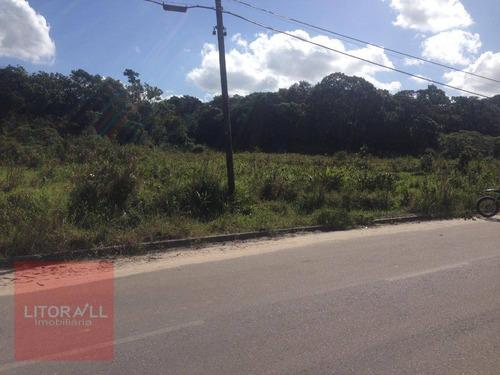 Imagem 1 de 19 de Terreno À Venda, 570 M² Por R$ 50.000,00 - Cidade Jardim Coronel - Itanhaém/sp - Te0328