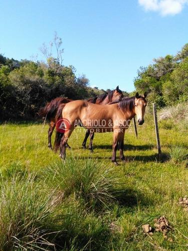 Campo Agricola Ganadero Sobre Ruta 13 A 5 Kilómetros De Aigua - Ref: 6562