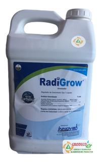 10 Lt Radigrow Enraizador Organico Auxinas Envio Gratis
