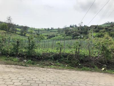 Terreno Bien Ubicado San Jose De Minas 13.569 M2