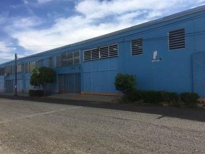 Bodegas Y Locales Comerciales Con Oficinas San Juan Del Rio