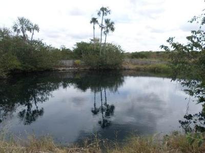 Rancho En Venta Con 3 Hermosos Cenotes A Flor De Tierra