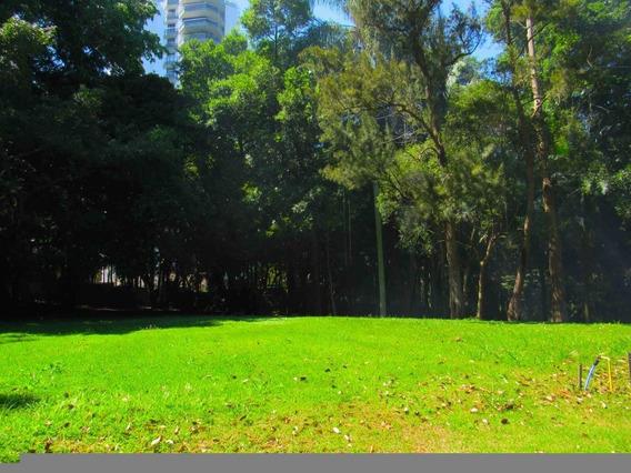 Terreno-são Paulo-alto Da Boa Vista | Ref.: 375-im66266 - 375-im66266