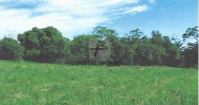 Terreno Industrial - Santa Cruz - Ref: 3233 - V-3233