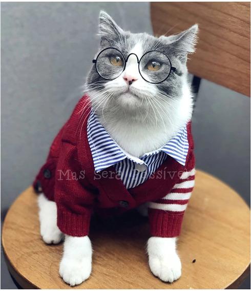 Óculos De Sol Pet - Cães E Gatos - Roupa Pet