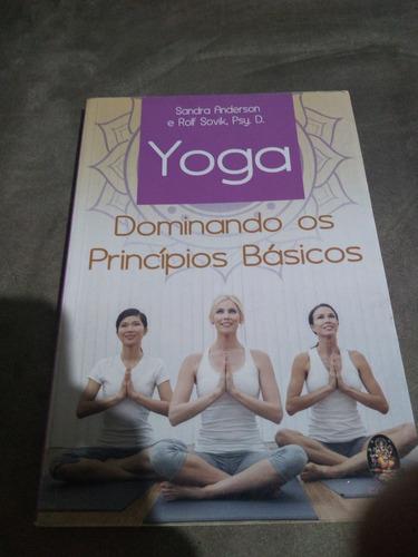 Imagem 1 de 1 de Yoga - Dominando Os Princípios Básicos