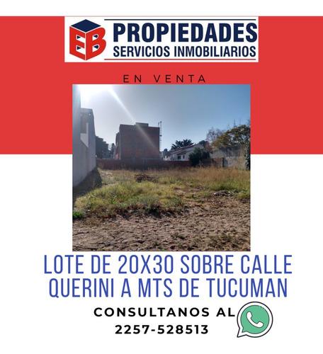 Imagen 1 de 5 de Amplio Lote En San Bernardo (se Escuchan Oferta)
