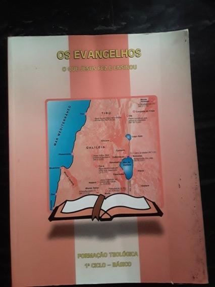 Livro Os Evangelhos - Teologia Eetad