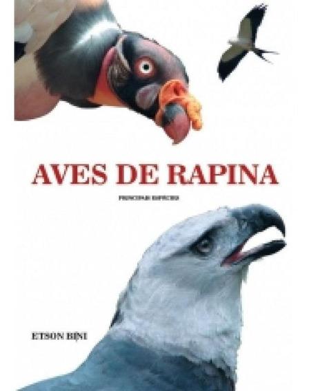Aves De Rapina - Principais Especies - Homem Passaro