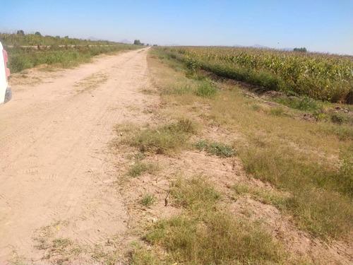 Imagen 1 de 8 de Terreno En Venta