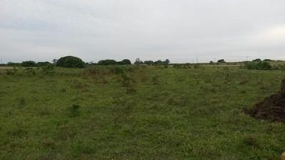 Venta - Rancho Jobal 20-40ha Campo Alto Balancán