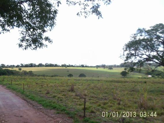 Imovel Rural - Água Vermelha - 4467
