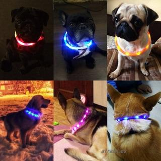 Collar Perro Gato Usb Recargable Luz Intermitente Mediano$um